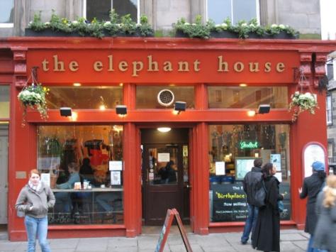 the_elephant_house